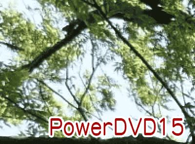4K動画の画質比較