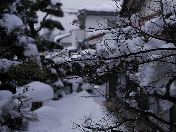 2017年1月23日~24日の大雪