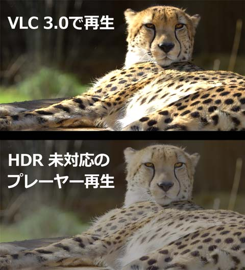 VLC Media Playerのインストール方法1