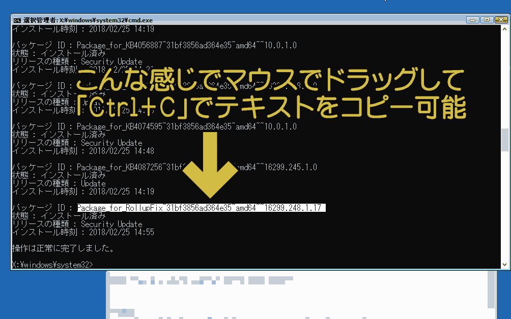画面上のテキストをドラッグして選択し、「Ctrl+C」でコピー