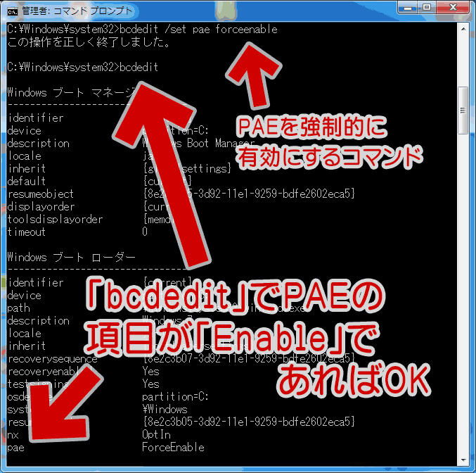 bcdedit /set pae forceenable