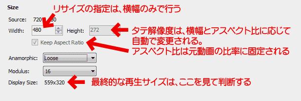 Handbrakeリサイズ:アナモルフィック:Loose(ゆるい)