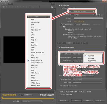 Adobe Premiere Pro + GoPro Cineform Codec