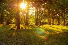 夕日、明るさの補正