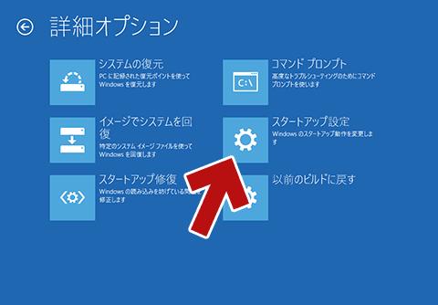 「詳細オプション」画面